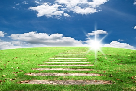 Walk way on the grass and blue sky field. Stock Photo - 11126952