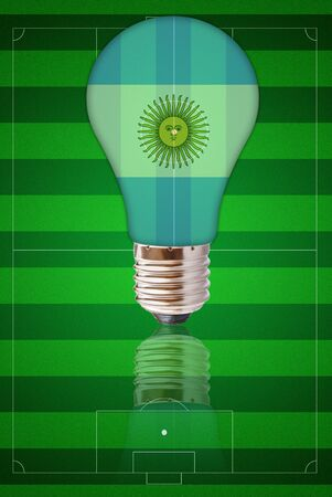 ingenuity: Light bulb with Argentina flag on soccer field.