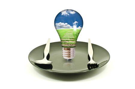 Light bulb on dish isolated. Stock Photo - 11500485
