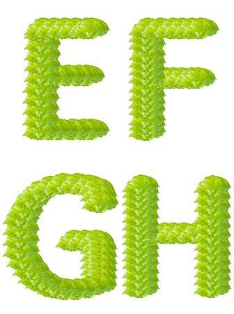 Green leaf E F G H alphabet character.