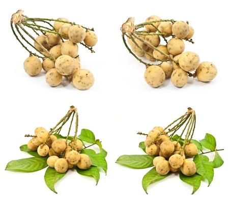 hemispherical: Set of Longkong fruit isolated.