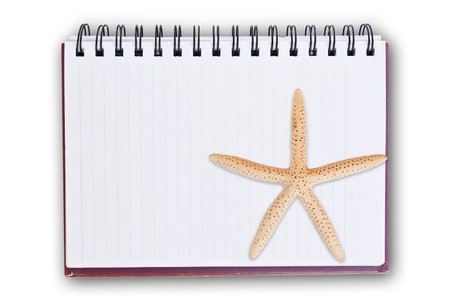 fish star: Estrellas de mar y el cuaderno