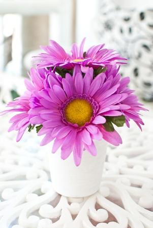 Beauty flower. photo