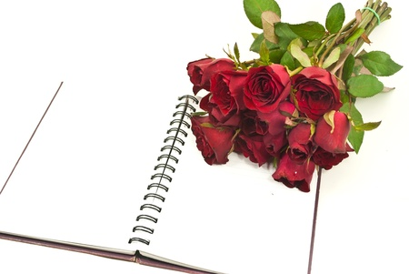 Red rose on the notebook  photo