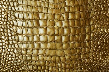 Vintage beige crocodile skin texture  photo