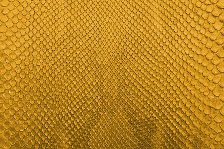 Gold-Python-Schlange Haut Textur Hintergrund