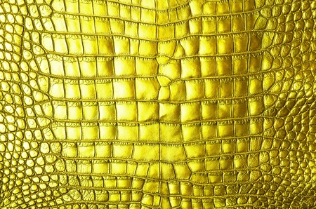 Vintage crocodile skin texture  photo