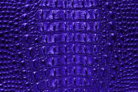 Blue Crocodile bone skin texture background  Stock Photo - 13284867