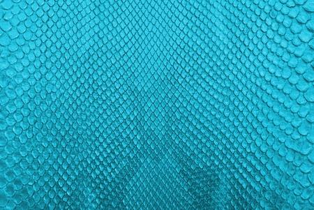 snake skin pattern: Blue python snake skin texture background  Stock Photo