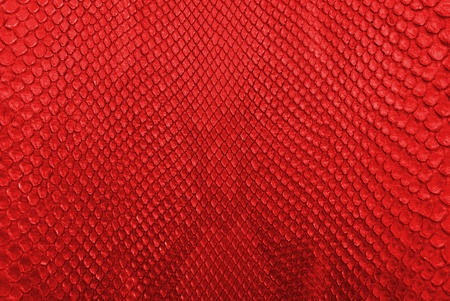 Red python snake skin texture background