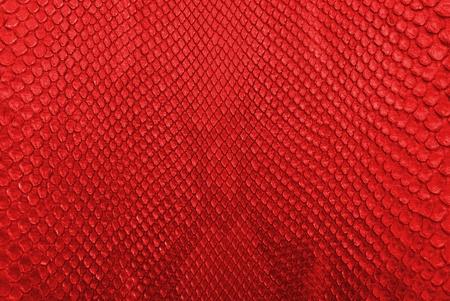 piel morena: Red serpiente pit�n de piel de textura de fondo Foto de archivo