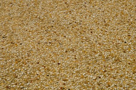 Sand texture on the beach  photo