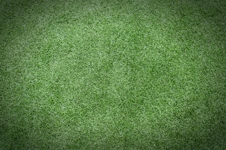 Soccer field  Standard-Bild