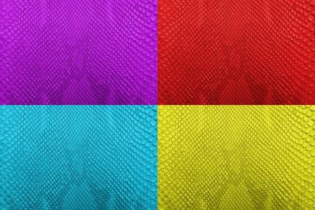 Set of Colorful python snake skin texture background