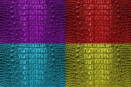 artificial light: Set of Crocodile bone skin texture background