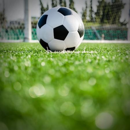 field  soccer: F?tbol F?tbol en el punto de penalti para Penal Foto de archivo