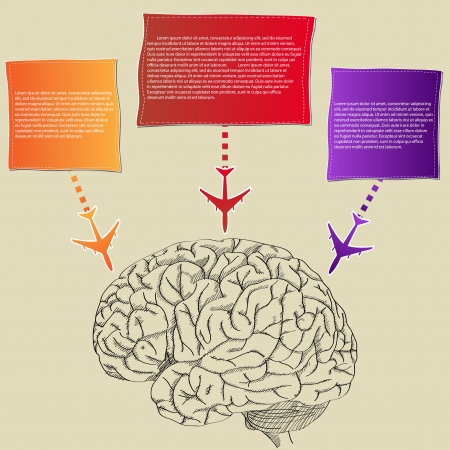 Human Brain with colorful Airplane Infographic banner Diagram for Business and Technology Concept, Vector Illustration  Vector