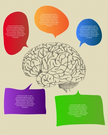 Human Brain with Infographic Banner Diagram for Business and Technology Concept Vector Outline Sketched Up, Vector Illustration Vector