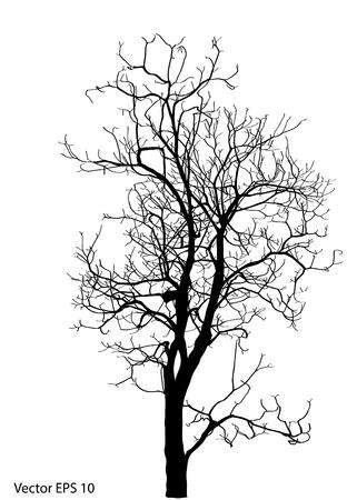 toter baum: Toter Baum ohne Blätter Vektor-Illustration Skizziert