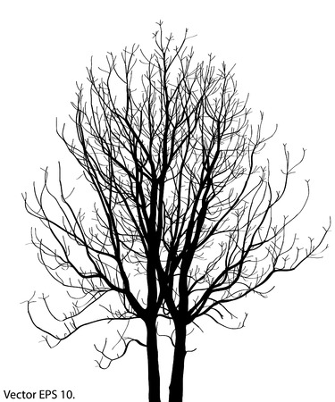 Dead Tree without Leaves Vector Illustration Sketched, EPS 10  Vector
