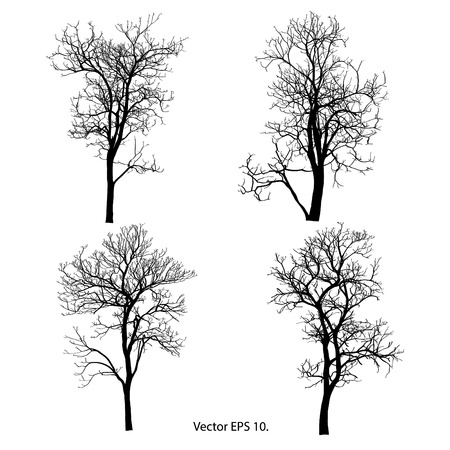Dead Tree without Leaves Vector Illustration Sketched, EPS 10 Stock Vector - 23971288