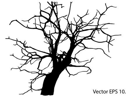 dode bladeren: Dode boom zonder bladeren Vector Illustratie Geschetst, EPS-10