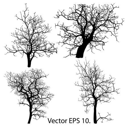 arbol: Conjunto de árbol muerto y sin hojas Ilustración vectorial bosquejada, EPS 10
