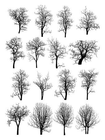 Árbol Muerto y sin hojas Ilustración vectorial bosquejada, EPS 10