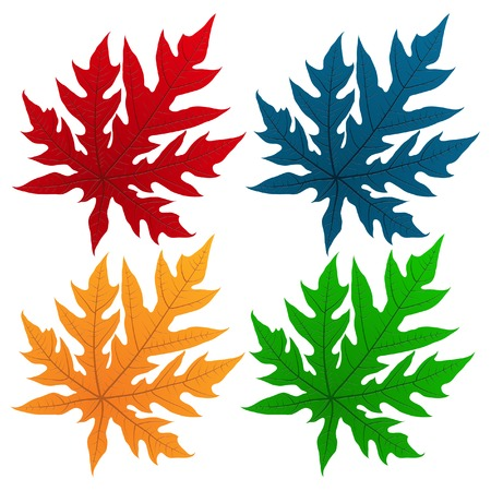 Set of Leaf Vector Illustration, EPS 10  Vector