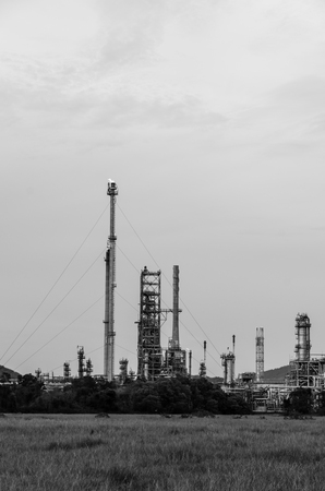 purify: Oil purify plant. Stock Photo