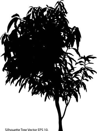 Silhouette Tree Vector Illustrator