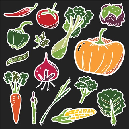 Vegetable Icon Line Drawing with Colour Vector