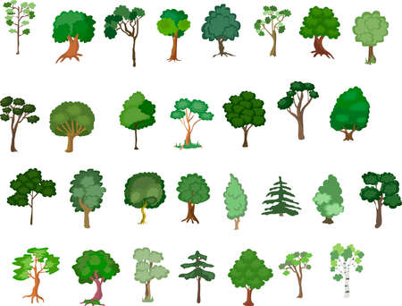 Set of trees of various plants isolated on white background