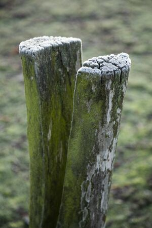 pole covered with white frost on a cold winter morning