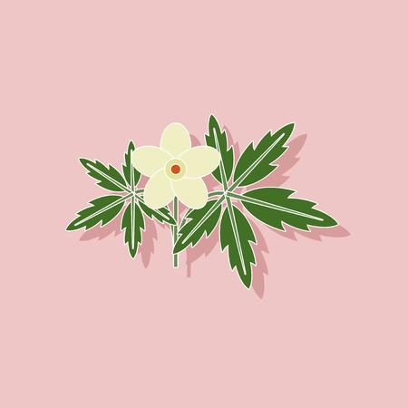 anemone: paper sticker on stylish background of flower Anemone Illustration