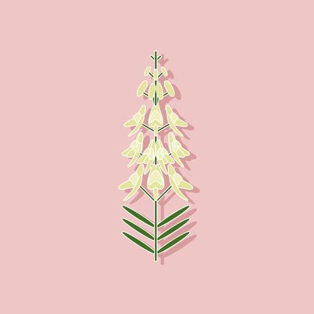 paper sticker on stylish background of herb Linaria Ilustração