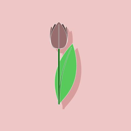 plantae: paper sticker on stylish background of plant Tulipa Illustration