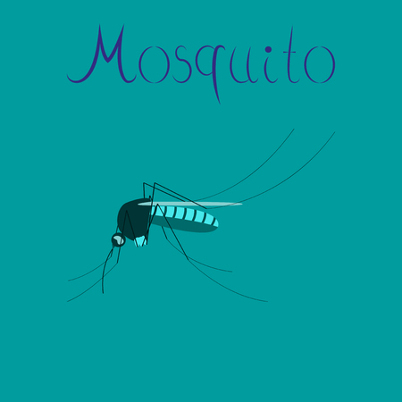 bloodsucker: flat icon on stylish background insect mosquito Illustration