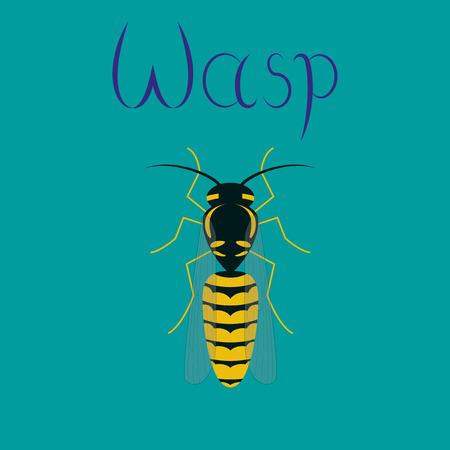 wasp: flat illustration on stylish background insect wasp Illustration