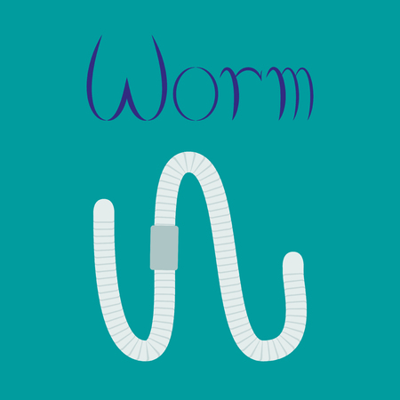 flat illustration on stylish background worm