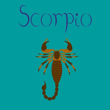 terrarium: flat illustration on stylish background animal Scorpio Illustration