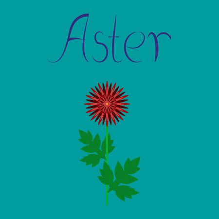 budding: flat illustration on stylish background flower aster