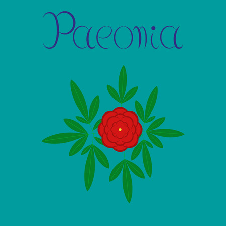 flat illustration on stylish background flower paeonia