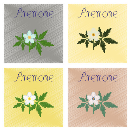 anemone: assembly flat shading style icon of flower Anemone
