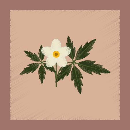 anemone: flat shading style icon of flower Anemone