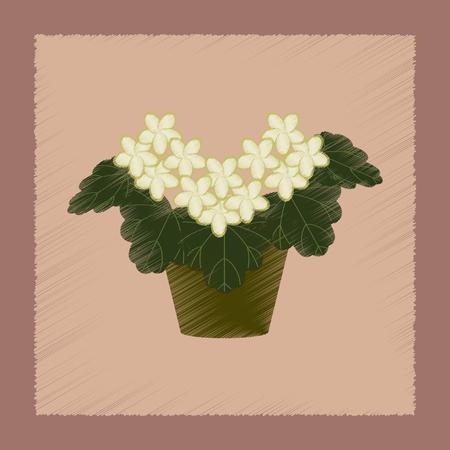 flat shading style Illustrations of plant Pelargonium