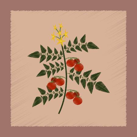 tomato plant: flat shading style Illustrations of tomato plant
