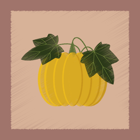 cinderella pumpkin: flat shading style Illustrations of plant Cucurbita