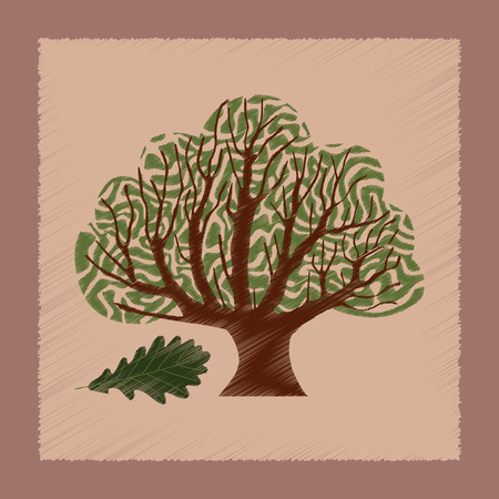 quercus: flat shading style Illustrations of plant Quercus