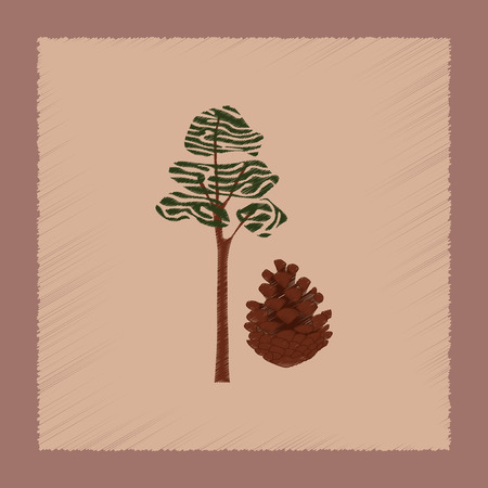 widespread: flat shading style Illustrations of plant Pinus
